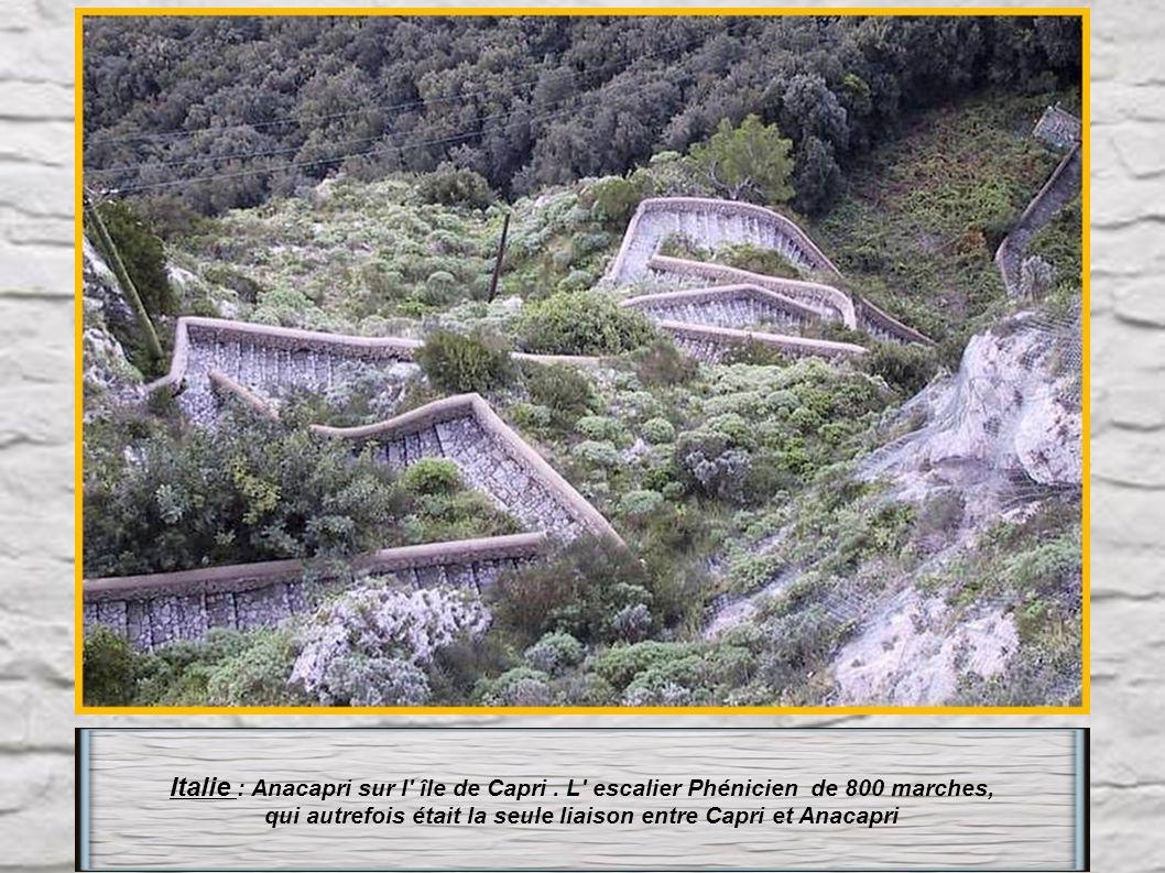 qui autrefois était la seule liaison entre Capri et Anacapri