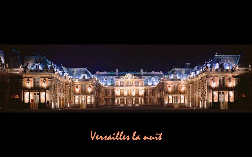 Versailles la nuit