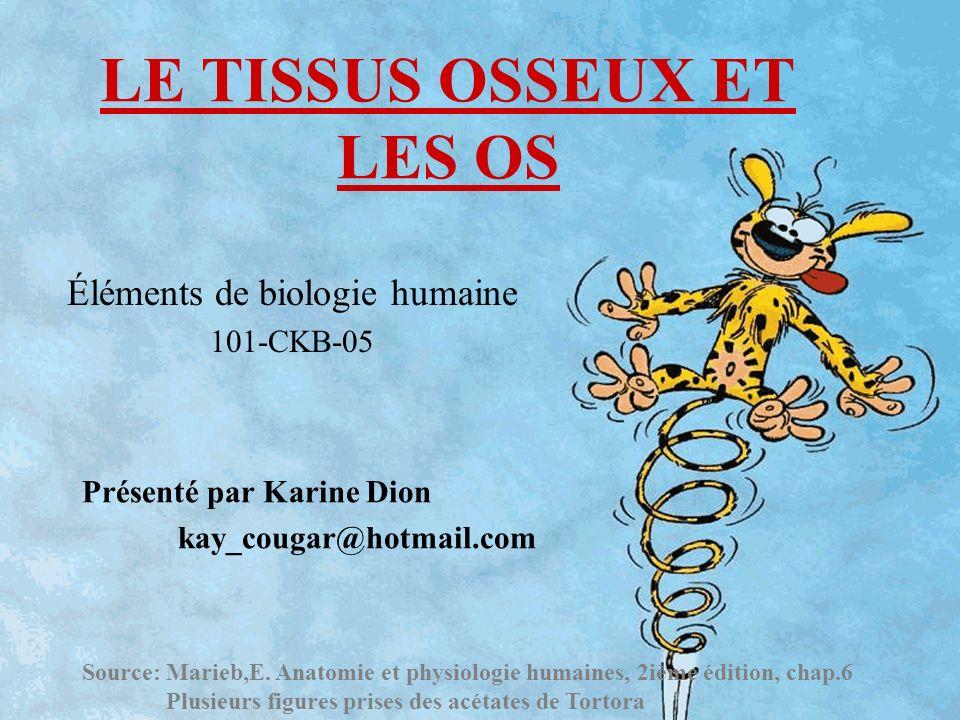 LE TISSUS OSSEUX ET LES OS