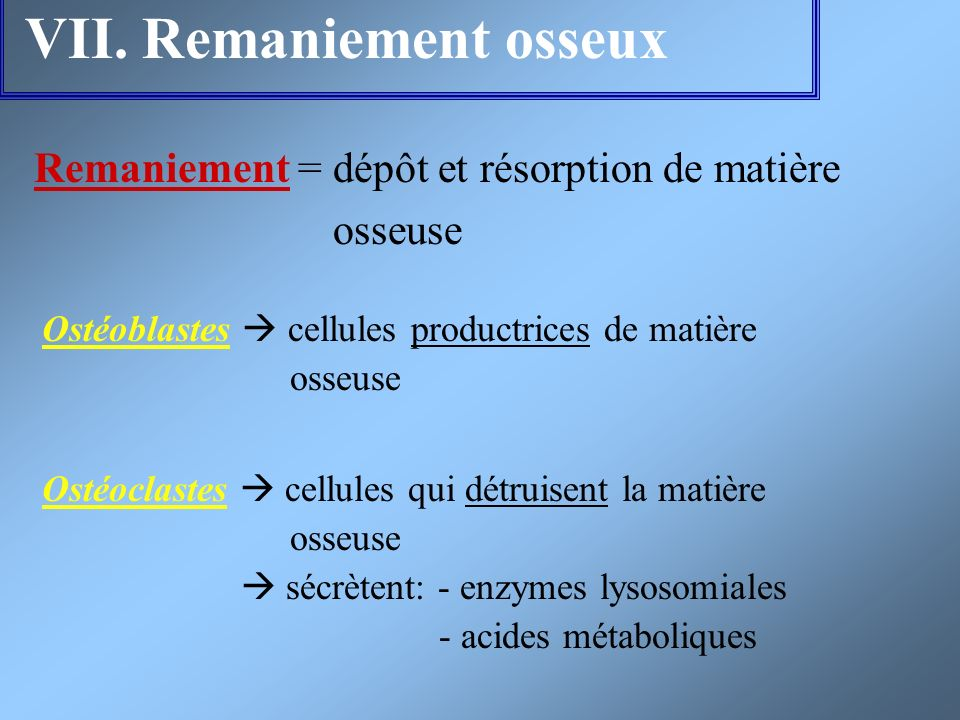 VII. Remaniement osseux