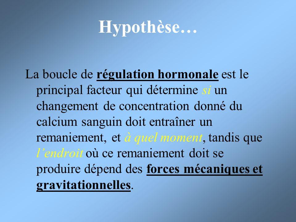 Hypothèse…
