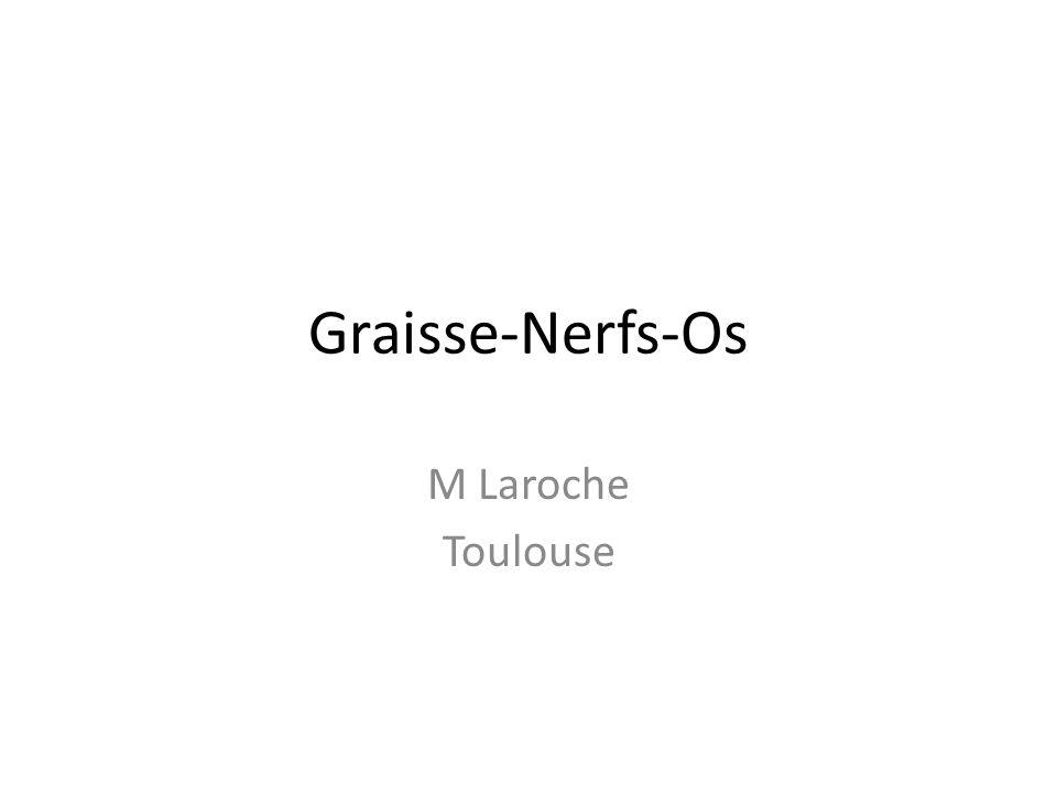 Graisse-Nerfs-Os M Laroche Toulouse