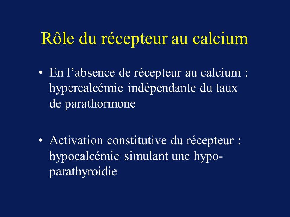 Rôle du récepteur au calcium