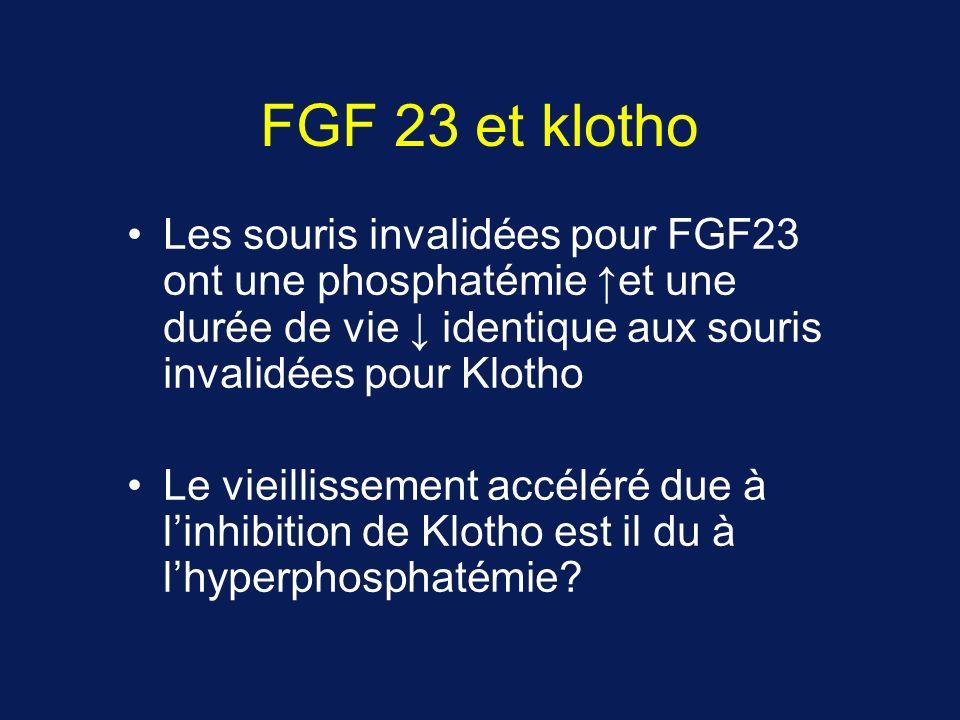 FGF 23 et klotho Les souris invalidées pour FGF23 ont une phosphatémie ↑et une durée de vie ↓ identique aux souris invalidées pour Klotho.