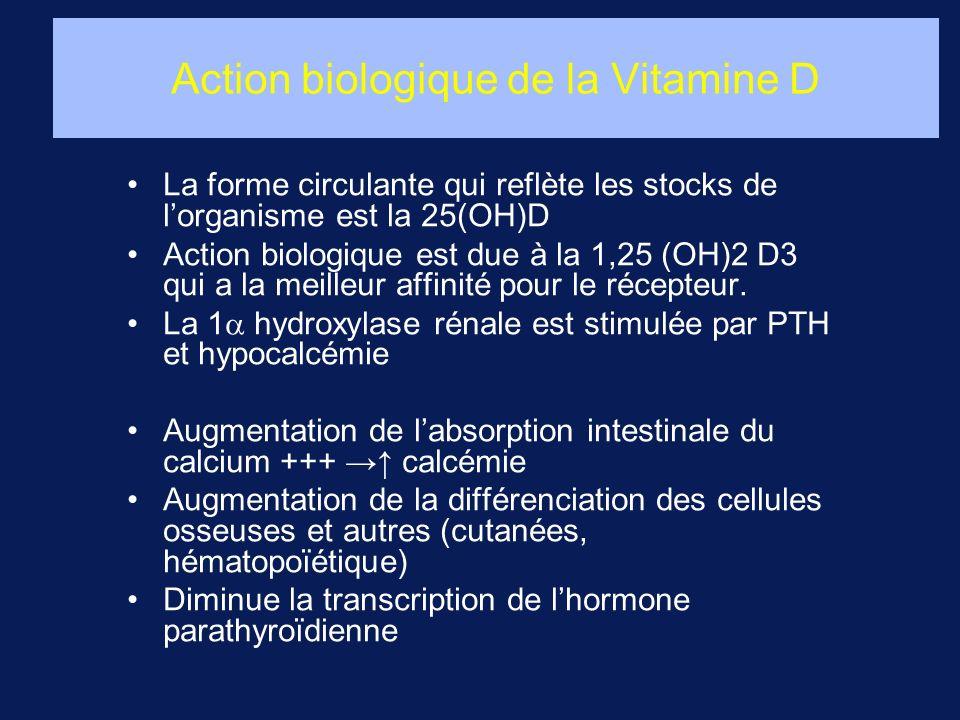 Action biologique de la Vitamine D