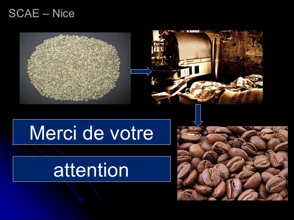 SCAE – Nice Merci de votre attention