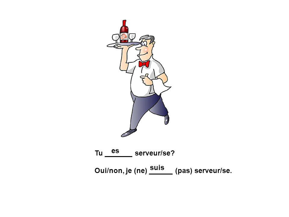 es Tu _______ serveur/se Oui/non, je (ne) ______ (pas) serveur/se. suis