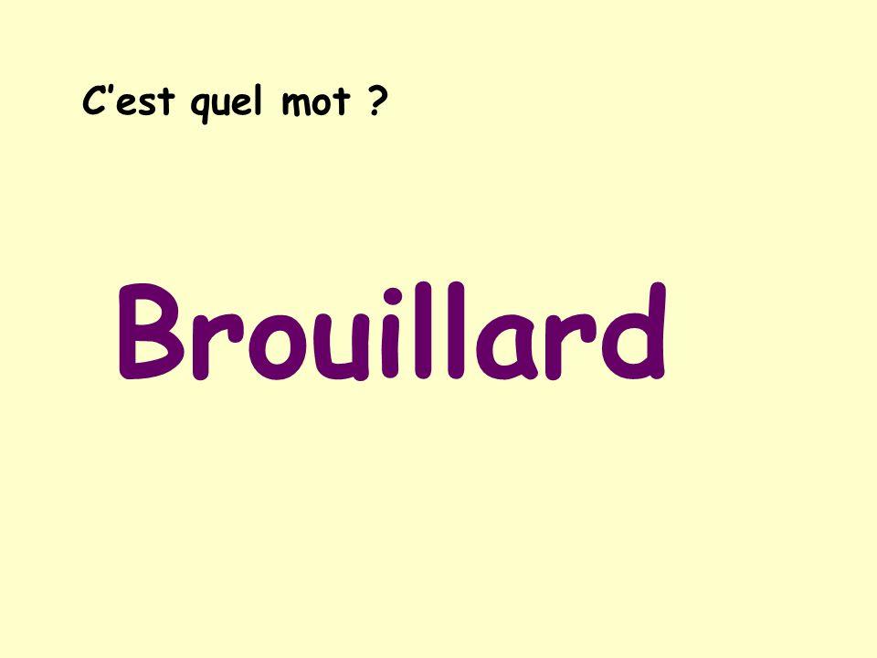 C'est quel mot Brouillard