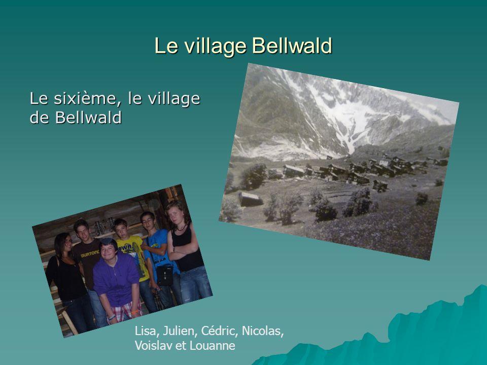Le village Bellwald Le sixième, le village de Bellwald