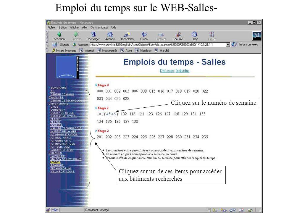 Emploi du temps sur le WEB-Salles-