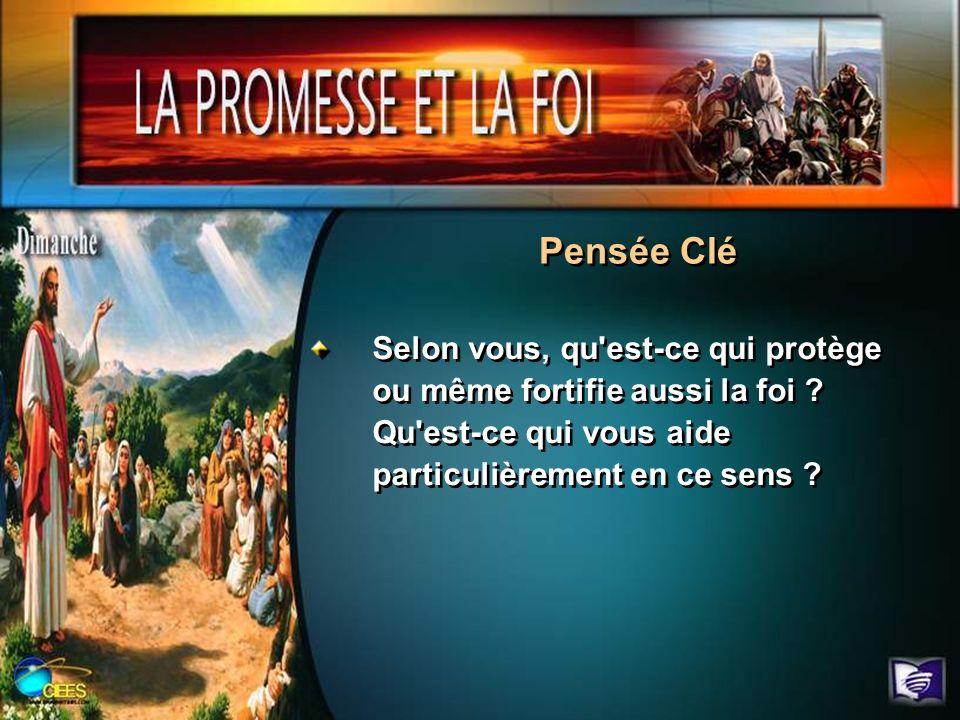 Pensée Clé Selon vous, qu est-ce qui protège ou même fortifie aussi la foi .