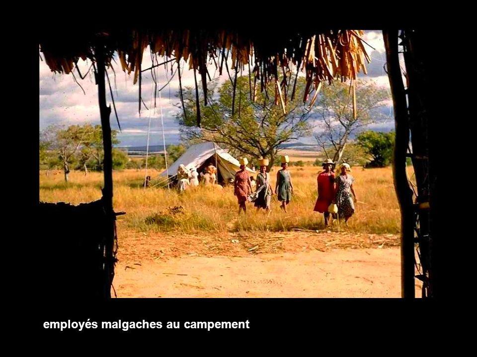 employés malgaches au campement