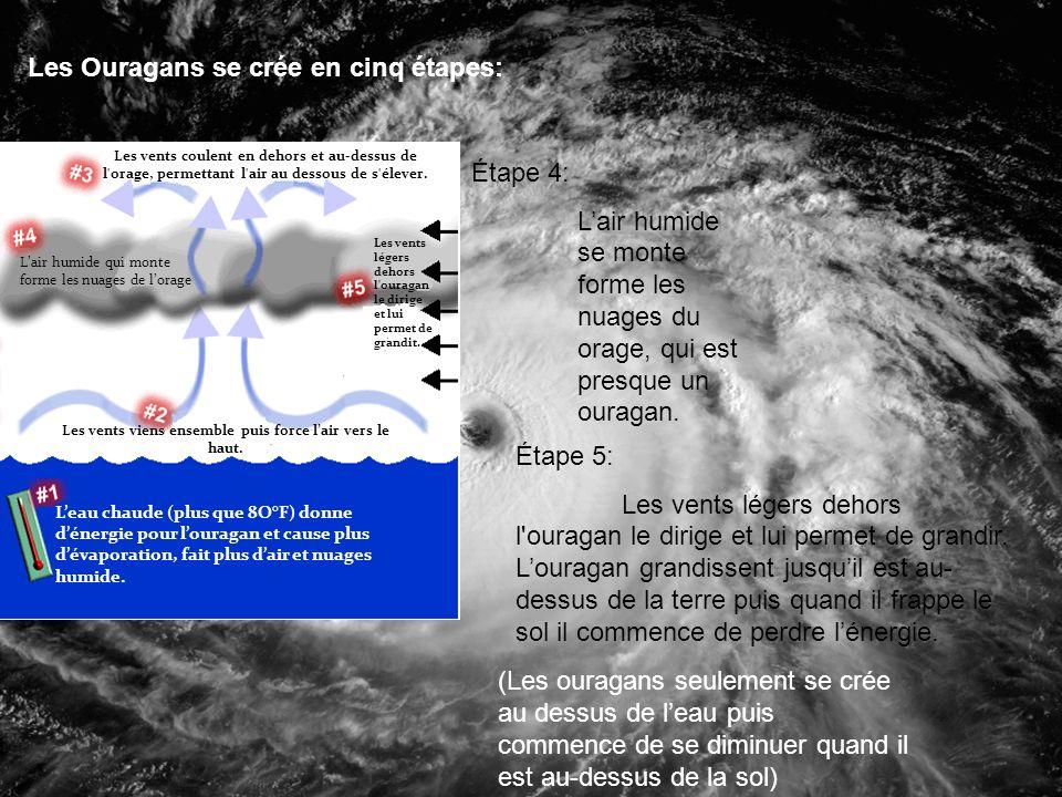 Les Ouragans se crée en cinq étapes: