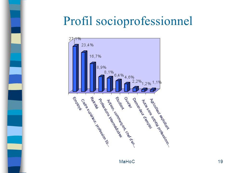 Profil socioprofessionnel