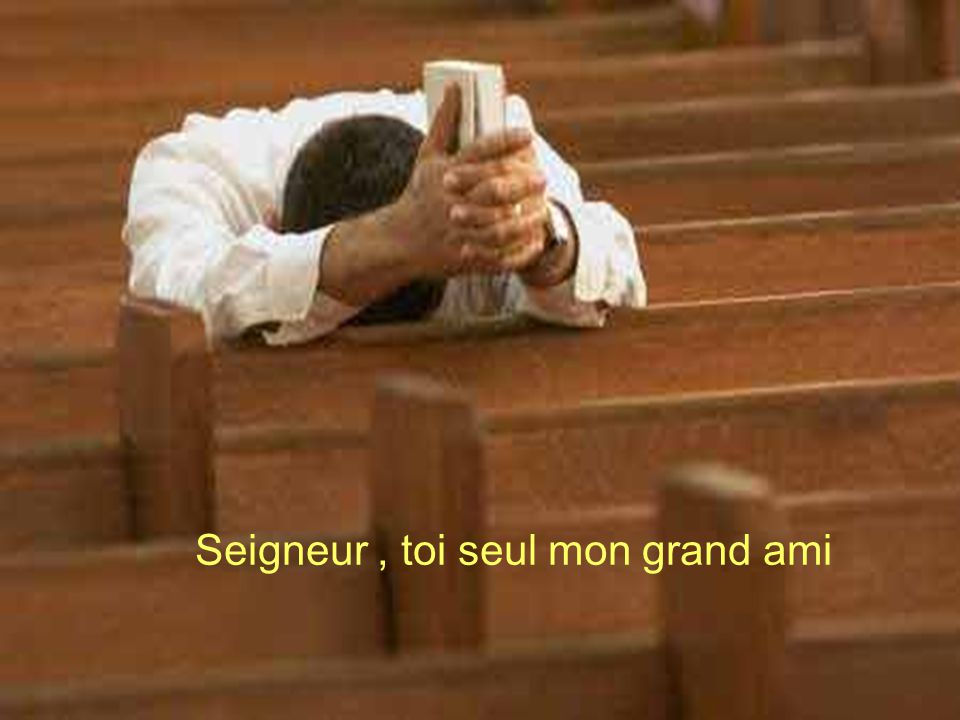 Seigneur , toi seul mon grand ami