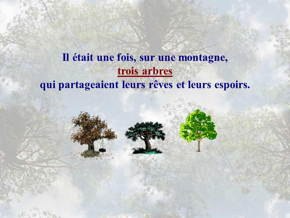 Il était une fois, sur une montagne, trois arbres qui partageaient leurs rêves et leurs espoirs.