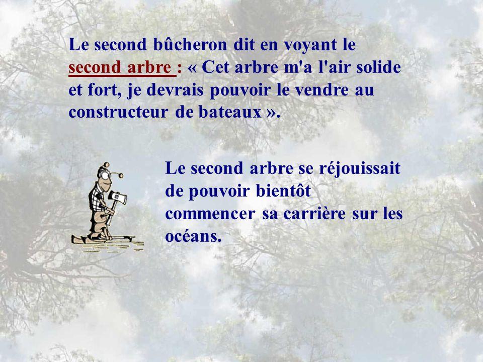 Le second bûcheron dit en voyant le second arbre : « Cet arbre m a l air solide et fort, je devrais pouvoir le vendre au constructeur de bateaux ».