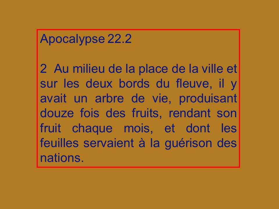 Apocalypse 22.2