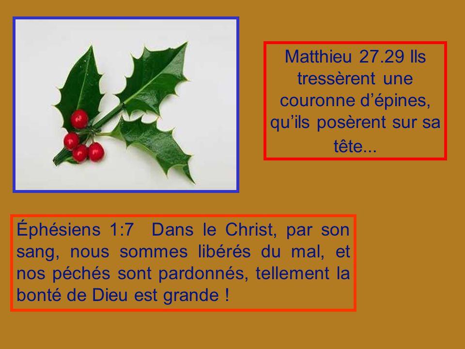 Matthieu 27.29 Ils tressèrent une couronne d'épines, qu'ils posèrent sur sa tête...
