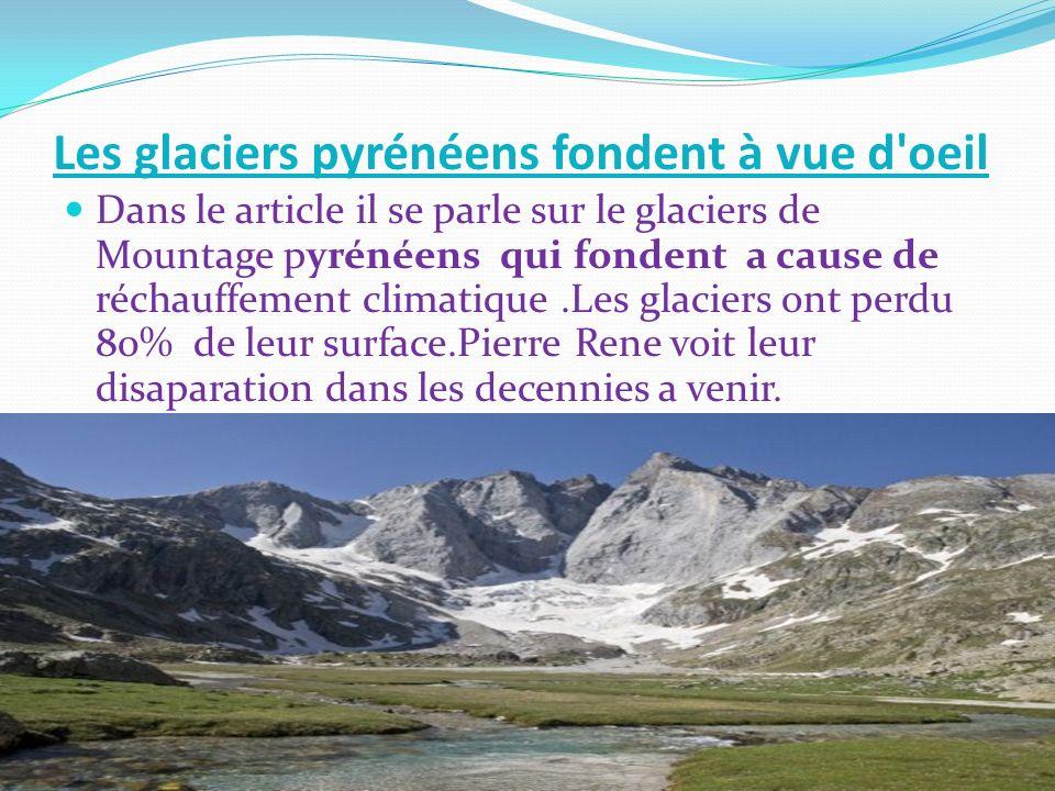 Les glaciers pyrénéens fondent à vue d oeil