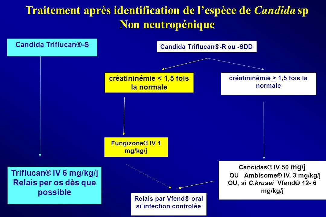 Traitement après identification de l'espèce de Candida sp