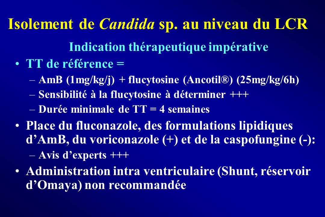 Isolement de Candida sp. au niveau du LCR