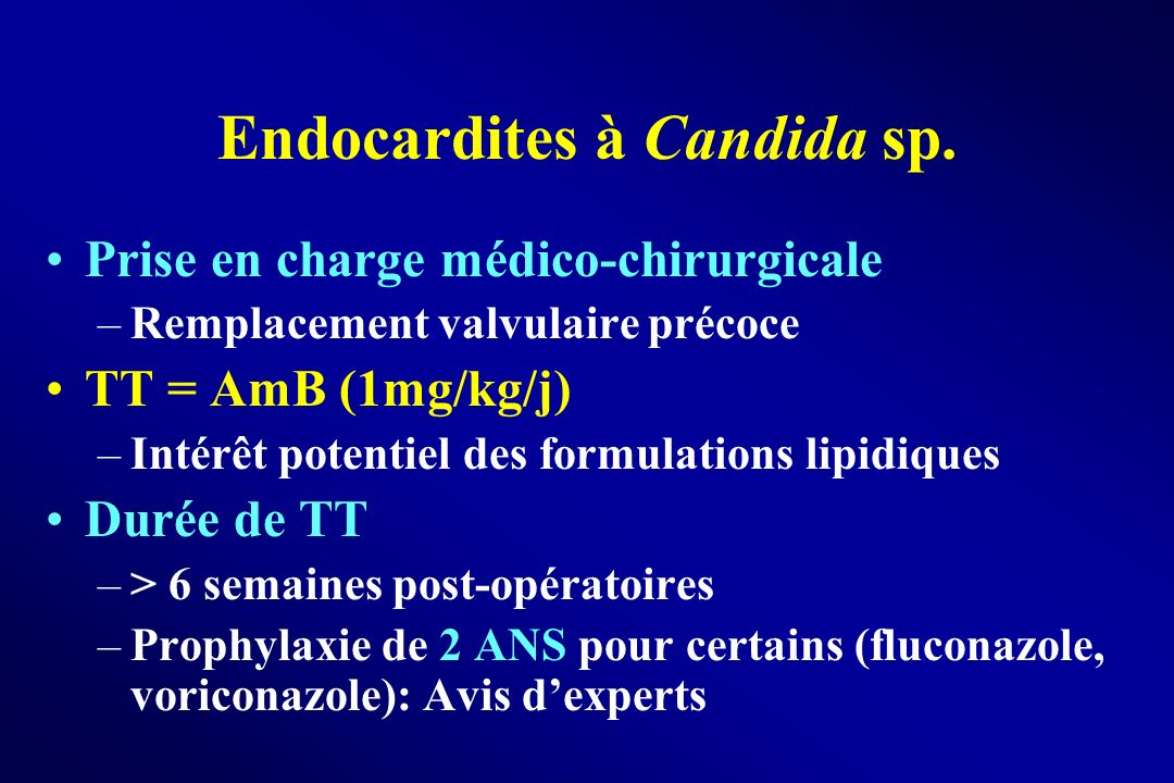 Endocardites à Candida sp.