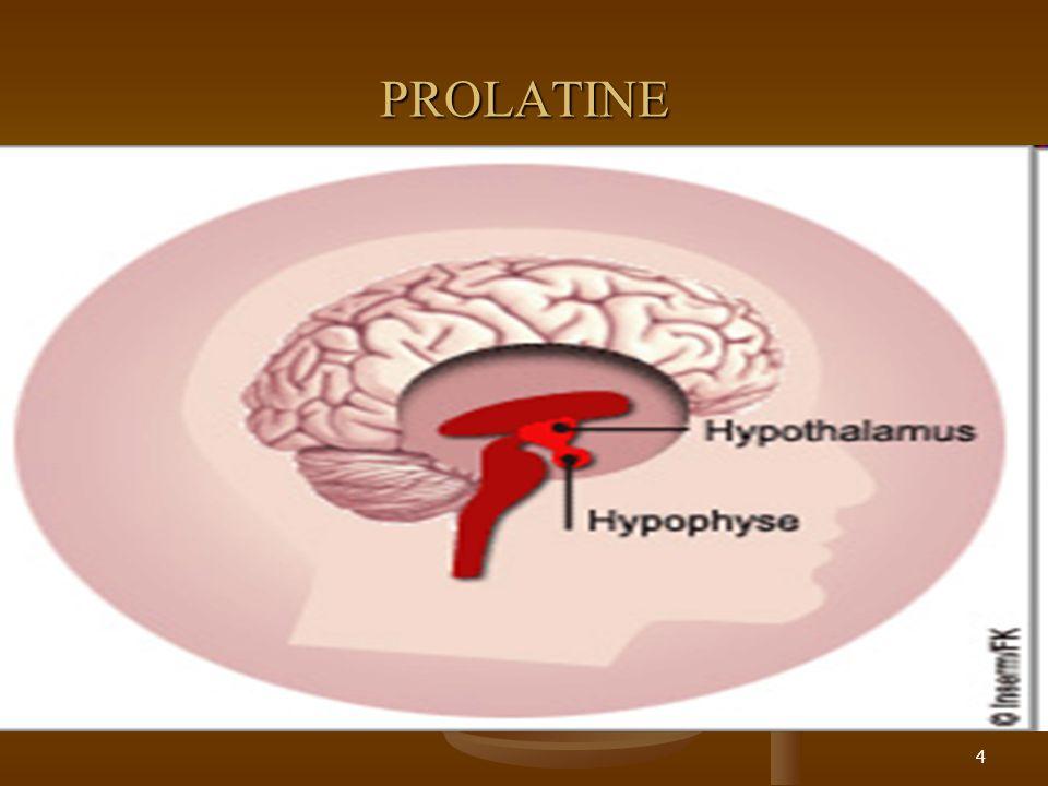 PROLATINE 4
