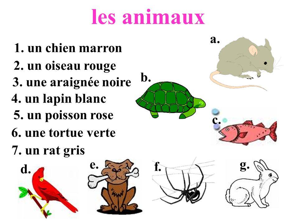 les animaux a. 1. un chien marron 2. un oiseau rouge b.
