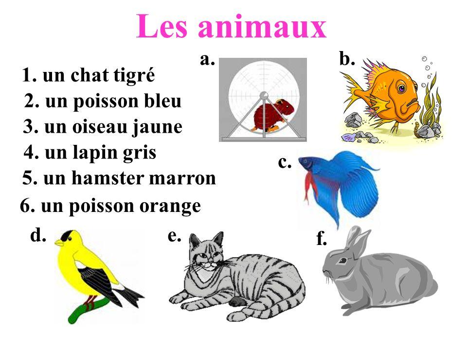 Les animaux a. b. 1. un chat tigré 2. un poisson bleu