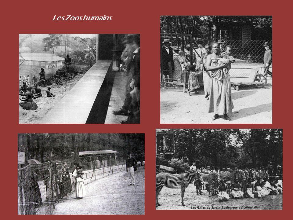 L'idée de promouvoir un spectacle zoologique mettant en scène des populations exotiques apparaît en parallèle dans plusieurs pays européens au cours des années 1870. En Allemagne, tout d'abord, où, dès 1874, Karl Hagenbeck, revendeur d'animaux sauvages et futur promoteur des principaux zoos européens, décide d'exhiber des Samoa et des Lapons comme populations « purement naturelles » auprès des visiteurs avides de « sensations ». Le succès de ces premières exhibitions le conduit, dès 1876, à envoyer un de ses collaborateurs au Soudan égyptien dans le but de ramener des animaux ainsi que des Nubiens pour renouveler l'« attraction ». Ces derniers connurent un succès immédiat dans toute l'Europe, puisqu'ils furent présentés successivement dans diverses capitales comme Paris, Londres ou Berlin.