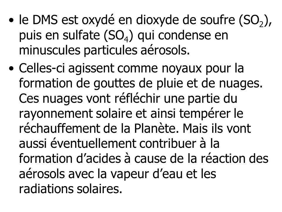 le DMS est oxydé en dioxyde de soufre (SO2), puis en sulfate (SO4) qui condense en minuscules particules aérosols.