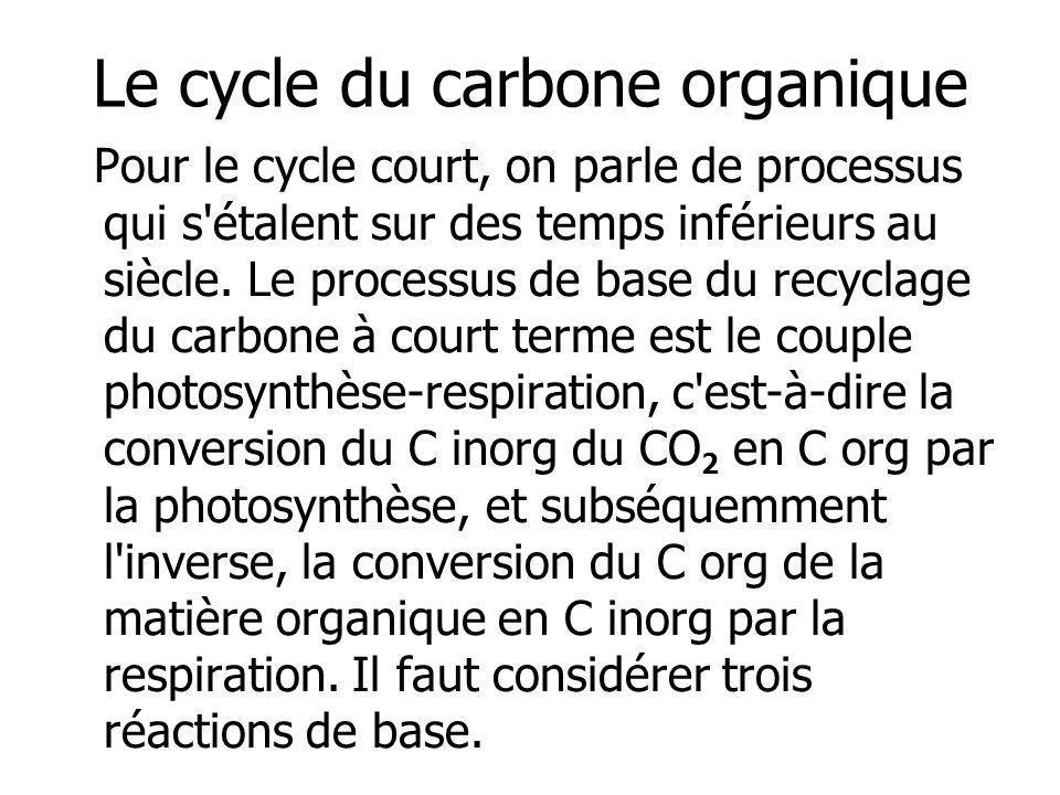 Le cycle du carbone organique