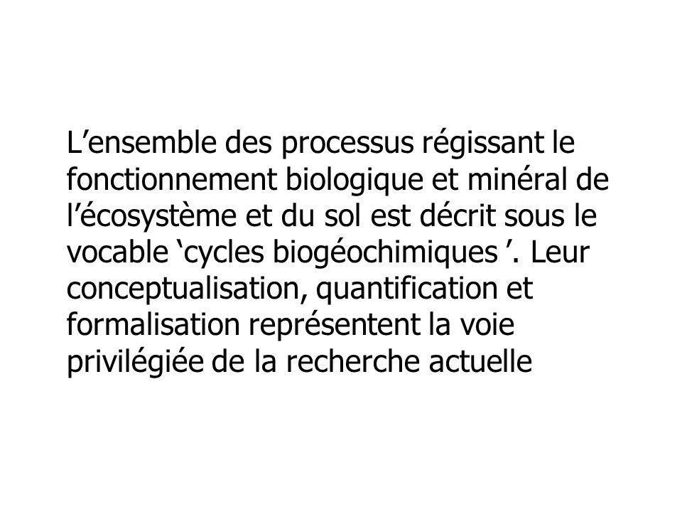 L'ensemble des processus régissant le fonctionnement biologique et minéral de l'écosystème et du sol est décrit sous le vocable 'cycles biogéochimiques '.