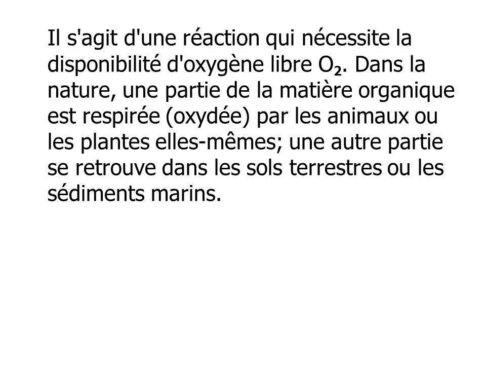 Il s agit d une réaction qui nécessite la disponibilité d oxygène libre O2.