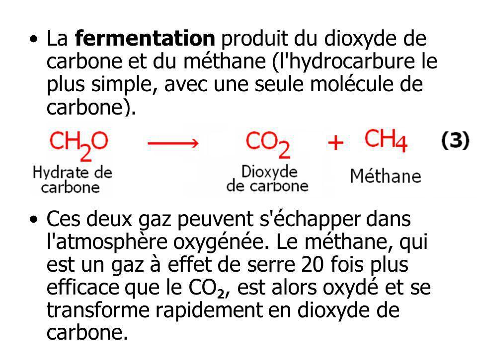 La fermentation produit du dioxyde de carbone et du méthane (l hydrocarbure le plus simple, avec une seule molécule de carbone).