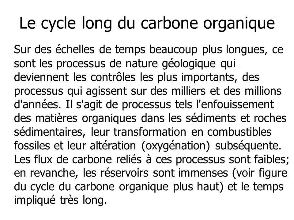 Le cycle long du carbone organique