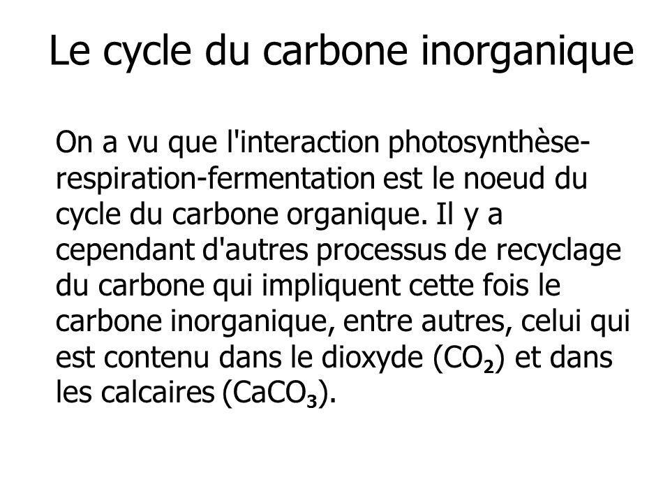 Le cycle du carbone inorganique