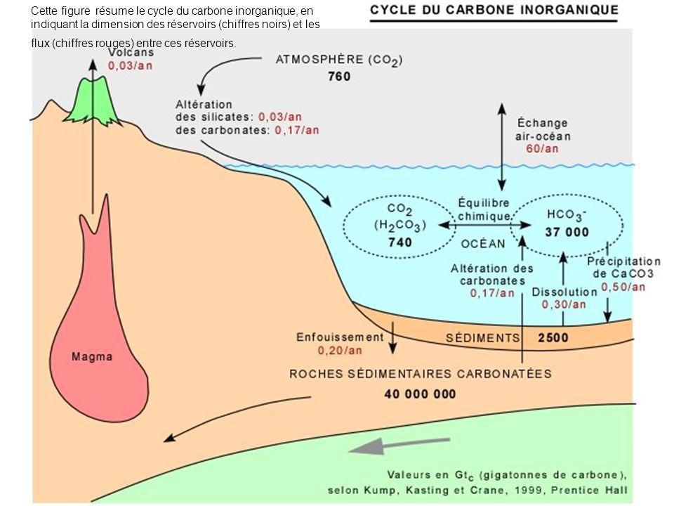 Cette figure résume le cycle du carbone inorganique, en indiquant la dimension des réservoirs (chiffres noirs) et les flux (chiffres rouges) entre ces réservoirs.