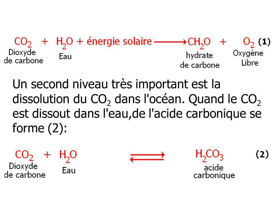 Un second niveau très important est la dissolution du CO2 dans l océan