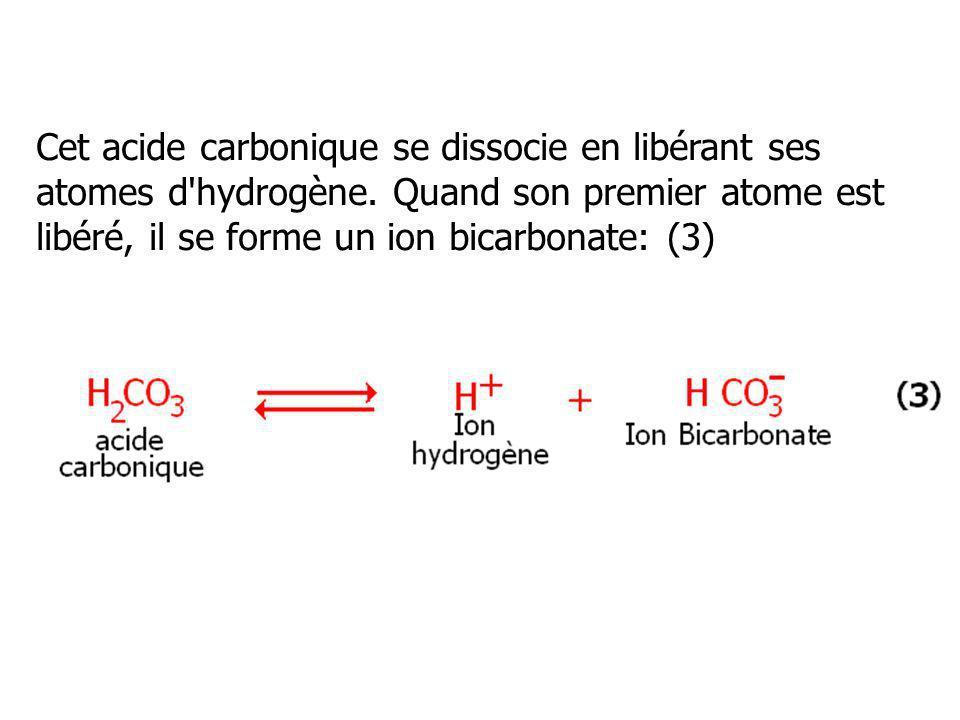 Cet acide carbonique se dissocie en libérant ses atomes d hydrogène