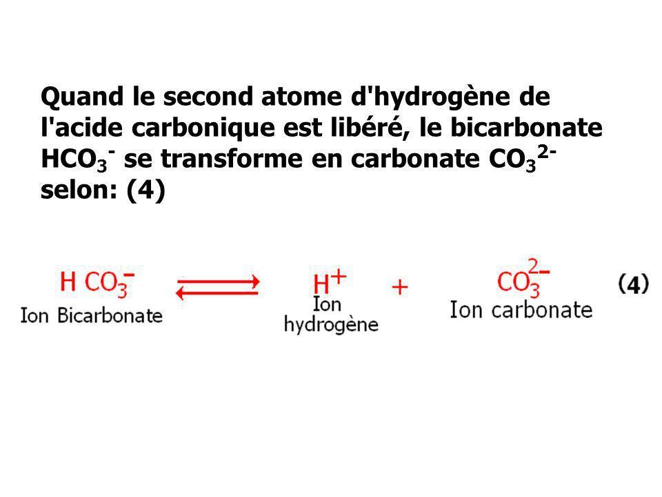 Quand le second atome d hydrogène de l acide carbonique est libéré, le bicarbonate HCO3- se transforme en carbonate CO32- selon: (4)