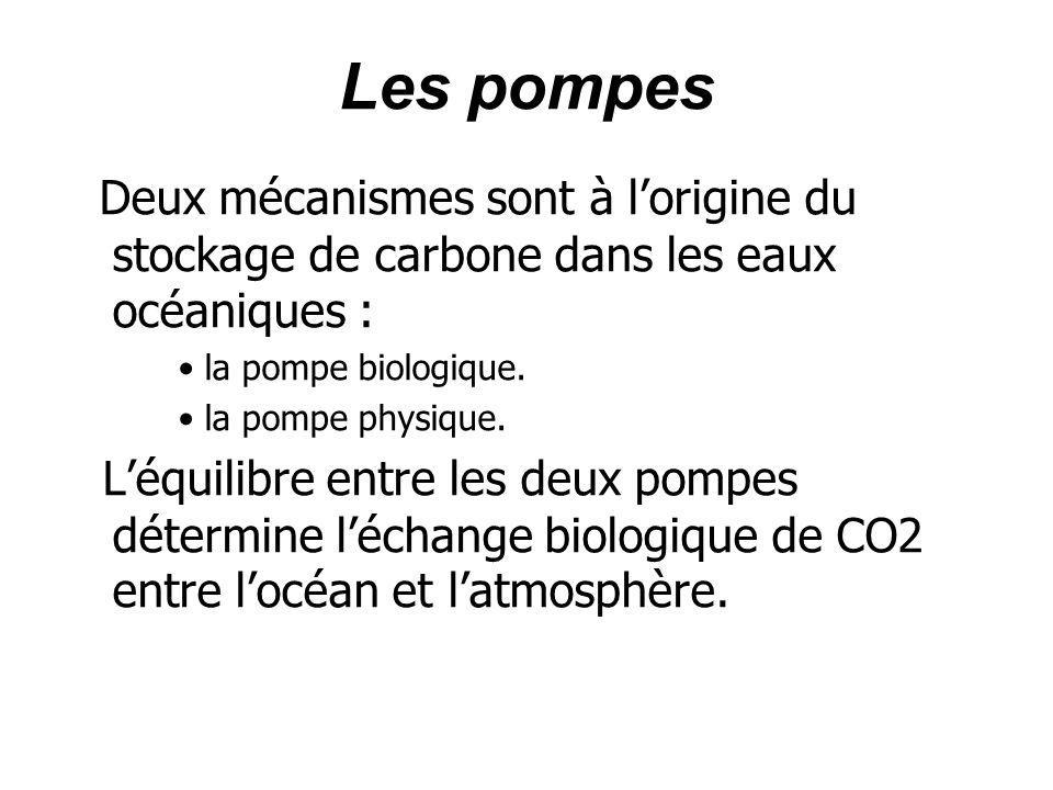 Les pompesDeux mécanismes sont à l'origine du stockage de carbone dans les eaux océaniques : la pompe biologique.