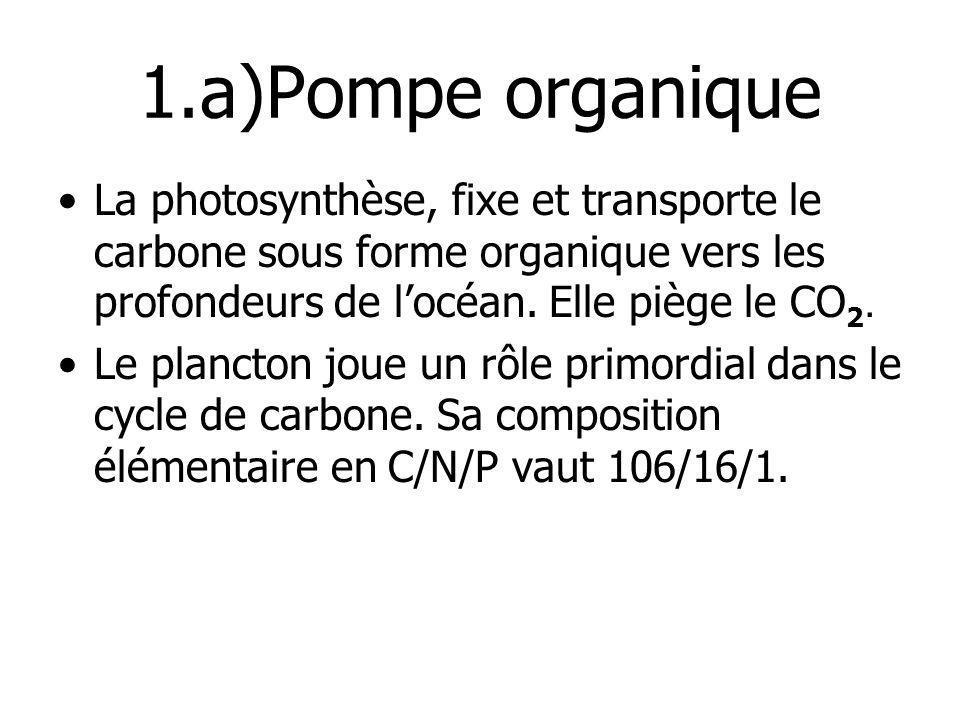 1.a)Pompe organiqueLa photosynthèse, fixe et transporte le carbone sous forme organique vers les profondeurs de l'océan. Elle piège le CO2.