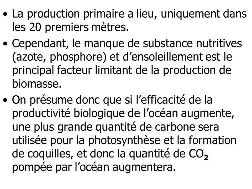 La production primaire a lieu, uniquement dans les 20 premiers mètres.