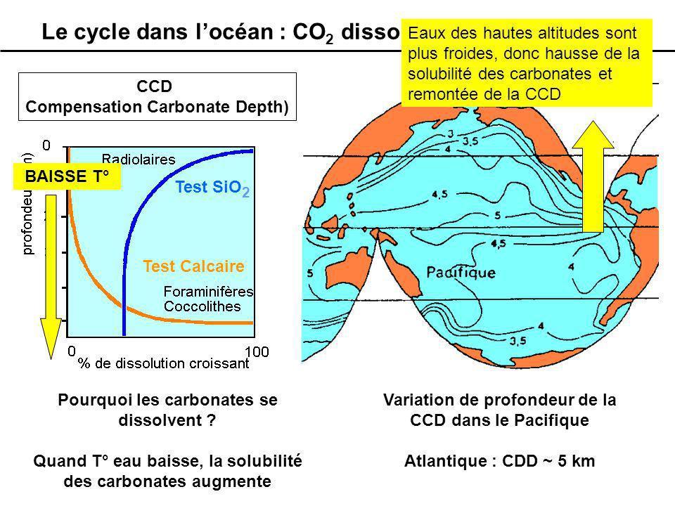Le cycle dans l'océan : CO2 dissous et carbonates