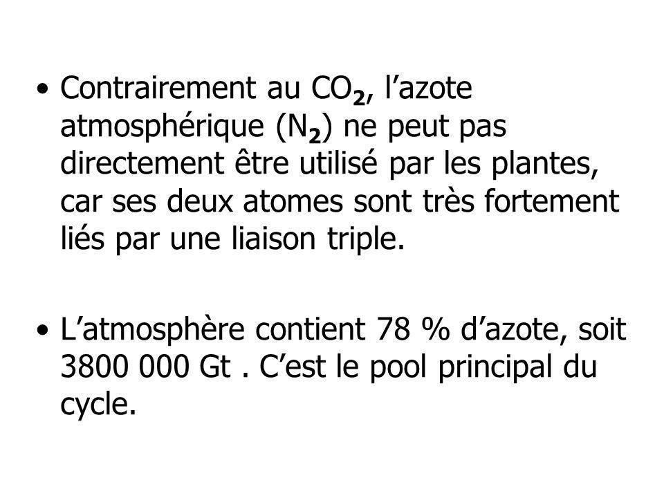 Contrairement au CO2, l'azote atmosphérique (N2) ne peut pas directement être utilisé par les plantes, car ses deux atomes sont très fortement liés par une liaison triple.