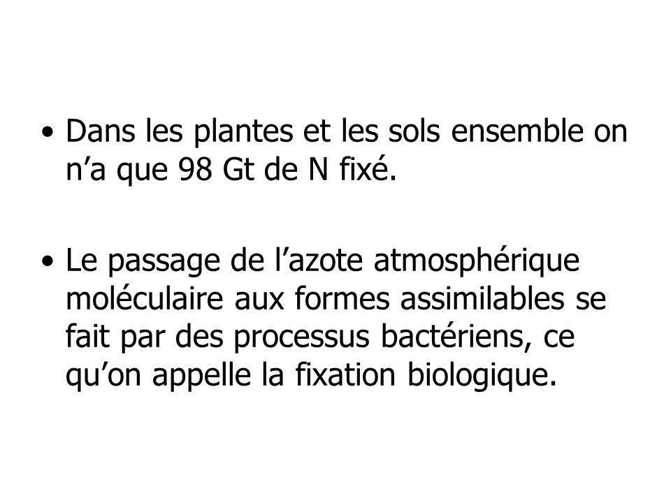 Dans les plantes et les sols ensemble on n'a que 98 Gt de N fixé.