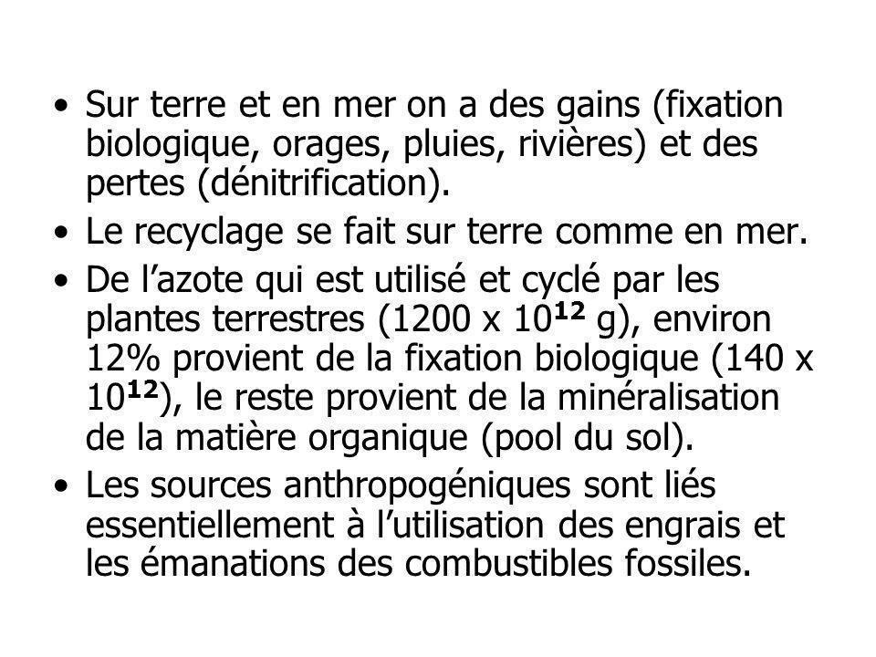 Sur terre et en mer on a des gains (fixation biologique, orages, pluies, rivières) et des pertes (dénitrification).