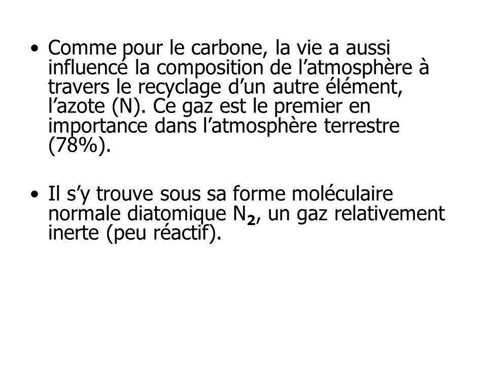 Comme pour le carbone, la vie a aussi influencé la composition de l'atmosphère à travers le recyclage d'un autre élément, l'azote (N). Ce gaz est le premier en importance dans l'atmosphère terrestre (78%).